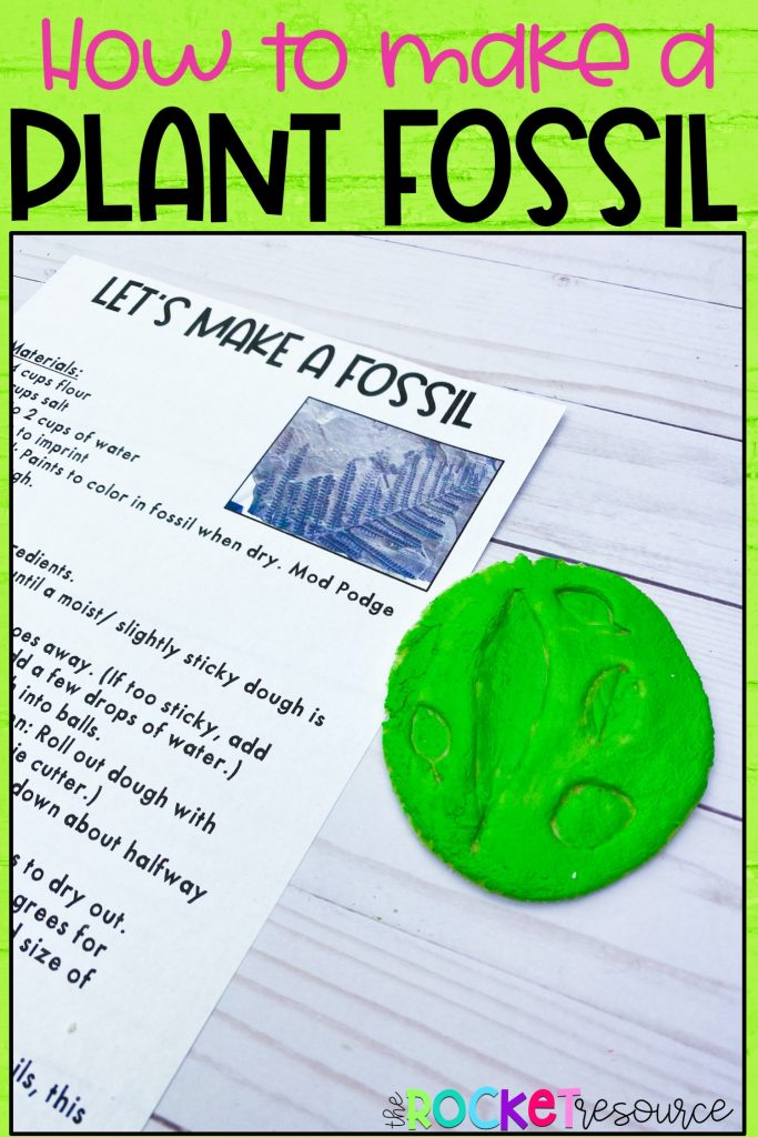 how to make a plant fossil