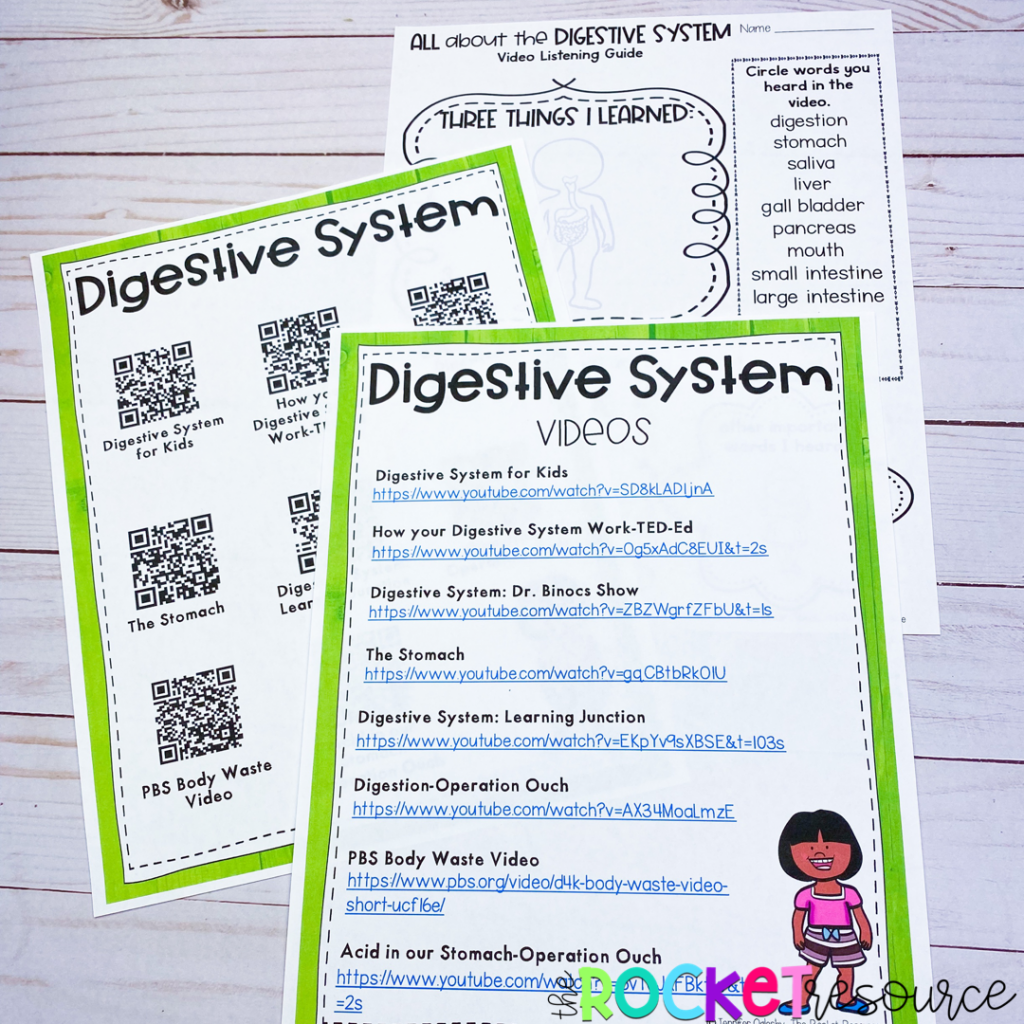 fun ways to teach about the digestive system