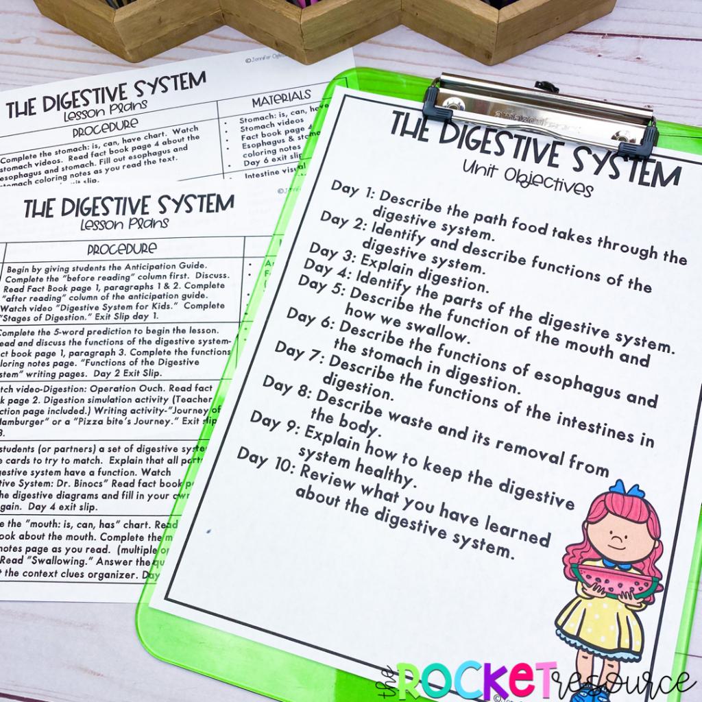 digestive system lesson plans