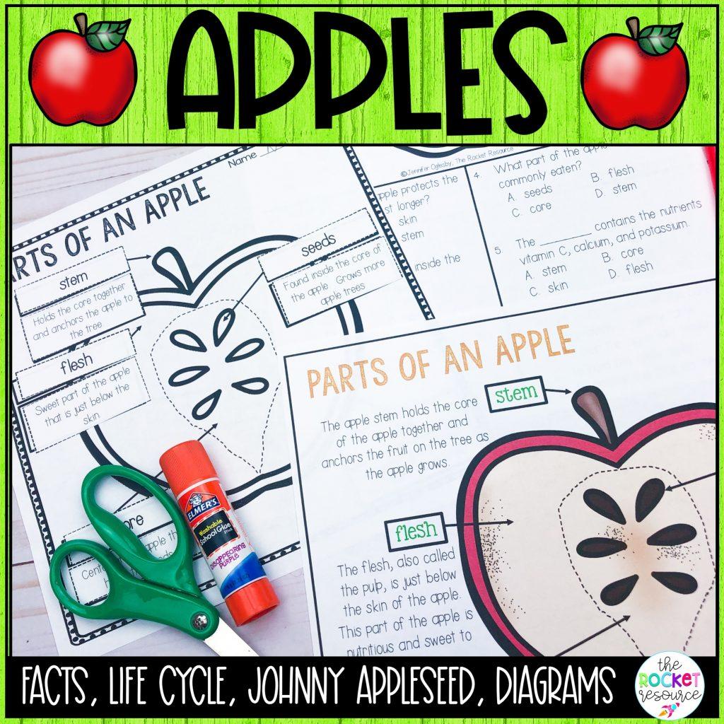 apple unit for second grade